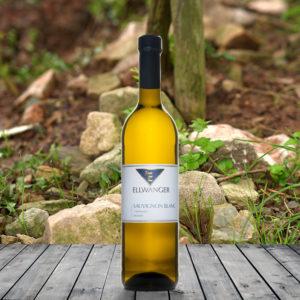 2015-sauvignon-blanc-hoehenluft-trocken